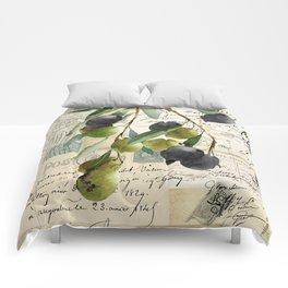 Olivia II Comforters