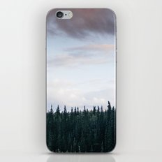 Alaska Trees in Denali National Park iPhone & iPod Skin
