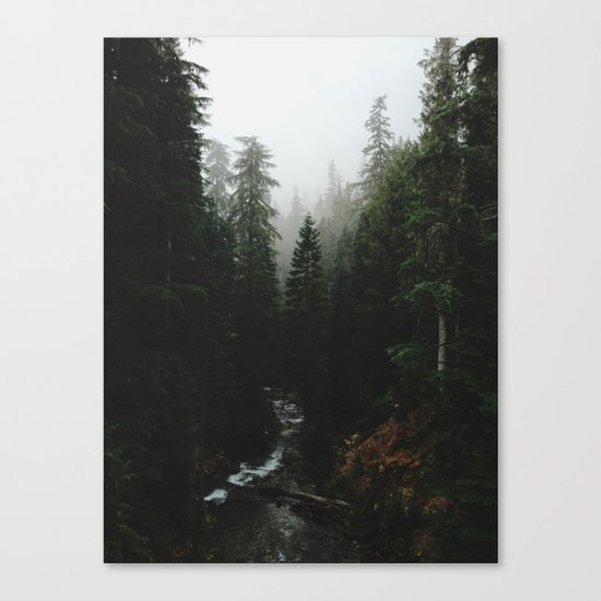 Rainier Creek Canvas Print