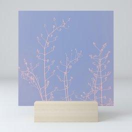 Serenity of Rose Jasmine Mini Art Print