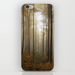 Lost in the forest iPhone Skin