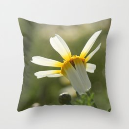 Loves me, loves me not daisy Throw Pillow