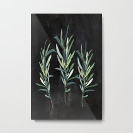 Eucalyptus Branches On Chalkboard Metal Print