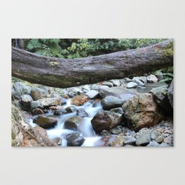 Whispy Waters Canvas Print