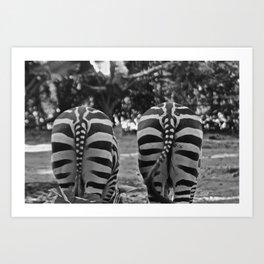 Zébre Art Print