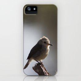 Birds from Pantanal chibum iPhone Case