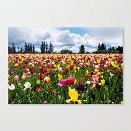 Tulips // Field Canvas Print