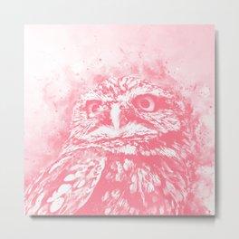 owl portrait 5 wspw Metal Print