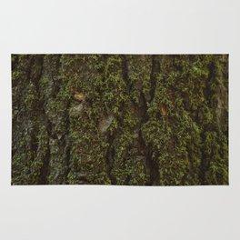 Redwood Forest XV Rug