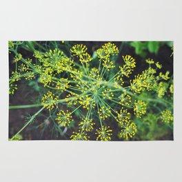 fresh flower of fennel Rug