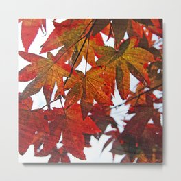 Autumn Leaves in Red and Orange Metal Print