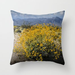 Wild Desert Flowers Blooming in the Anza-Borrego Desert State Park, Southern California Throw Pillow