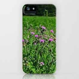 Legacy of the Highlands iPhone Case