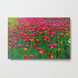 Ocean of Tulips - The Peace Collection Metal Print