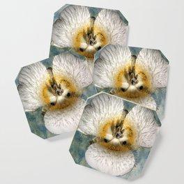 Mariposa Lily 1 Coaster