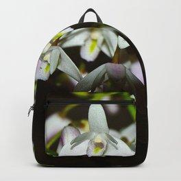Helder Joy Backpack