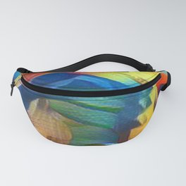 Vision Fanny Pack