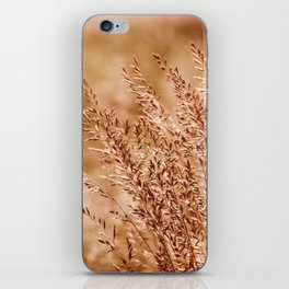 Clump of grass inflorescence sepia toned iPhone Skin