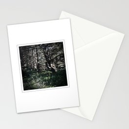 cape perpetua, siuslaw national forest, oregon Stationery Cards