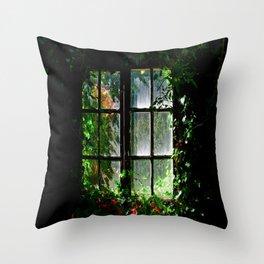 Secret garden window Throw Pillow