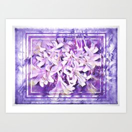 Honeysuckle in Violet and Pink Tones Art Print