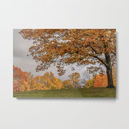 Brookline, Summer street view of fall Metal Print