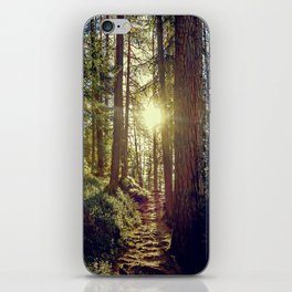Hidden trail iPhone Skin