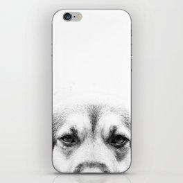 Dog portrait in black & white iPhone Skin