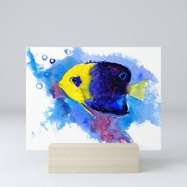 Pygmy Angelfish Mini Art Print