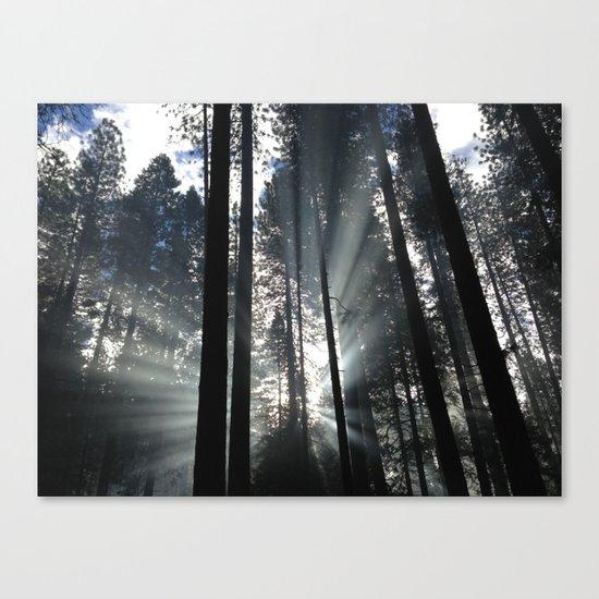 Yosemite National Park, USA Canvas Print