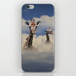 Heads above the Clouds with 3 Giraffes iPhone Skin