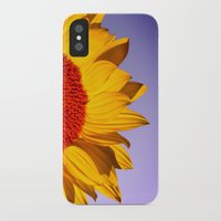 sunflowers iPhone & iPod Cases featuring sunflowers by mark ashkenazi