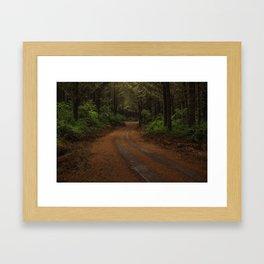Finer Forestry Framed Art Print