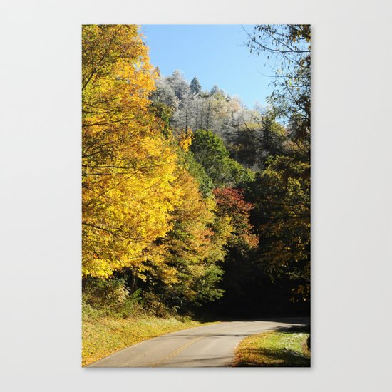 Down this road Canvas Print