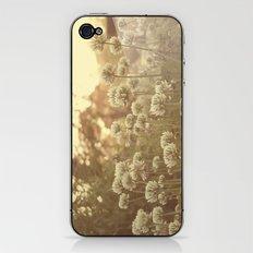 Sweet Sweet Clover iPhone & iPod Skin