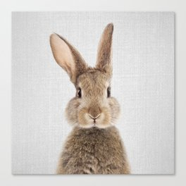 Rabbit - Colorful Canvas Print