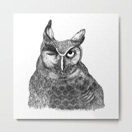 Owl Nr.1 Metal Print