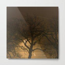 4am Trees Metal Print