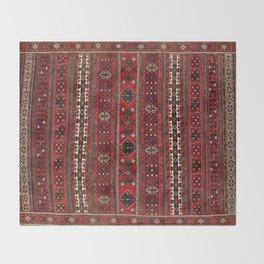 Baluch Flatweave  Antique Afghanistan  Rug Throw Blanket