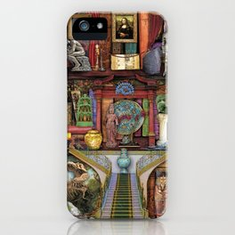 The Museum Shelf iPhone Case