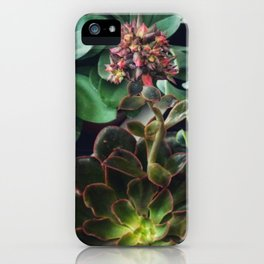 Succulents iPhone Case