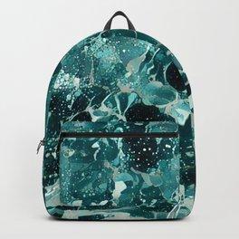Wash Backpack