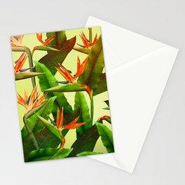 Birds of Paradise Stationery Cards