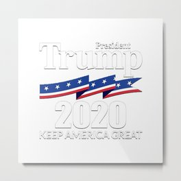 President Trump 2020 Metal Print