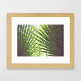 Cabana Life, No. 2 Framed Art Print