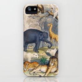 Jungle Animals - Goldsmith's Animated Nature iPhone Case