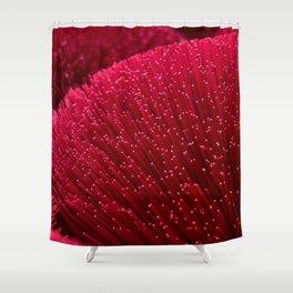 Fiber Life Shower Curtain