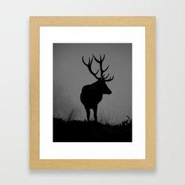 Wildlife, Monarch Of The Park Framed Art Print