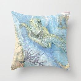 West Palm Beach Turtle Throw Pillow