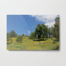 mellow romantic landscape spring summer Metal Print